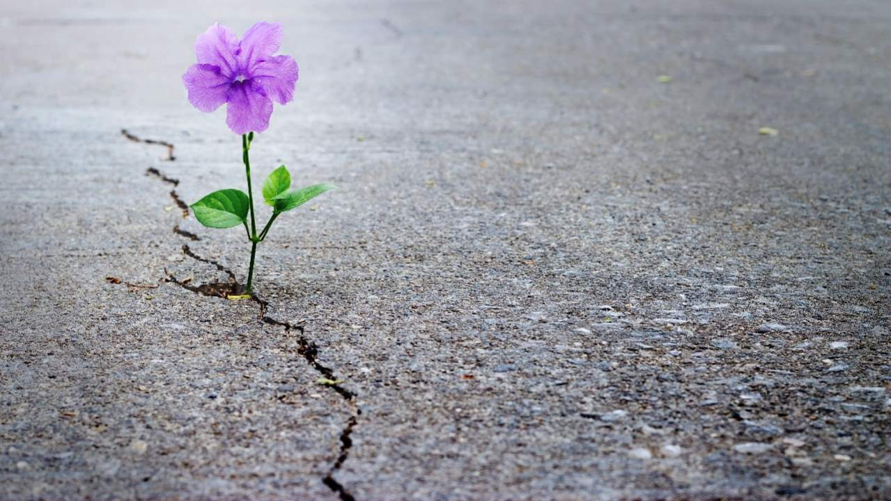 Life failure i discovered, taking up challenges promote personal transformation christianity